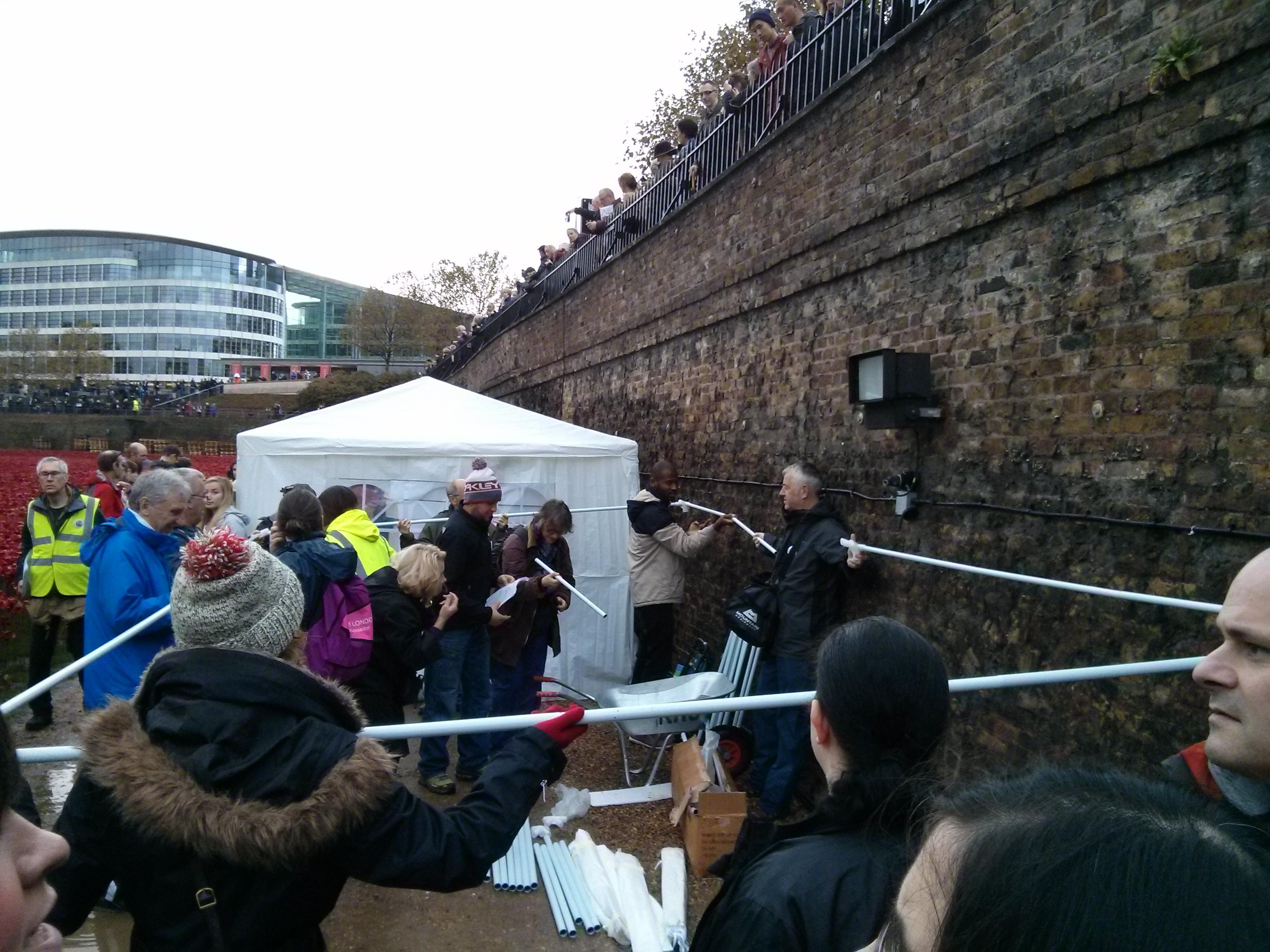 Tower poppies volunteers put up gazebo