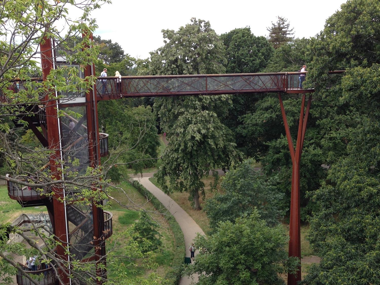 treetop walk at kew gardens