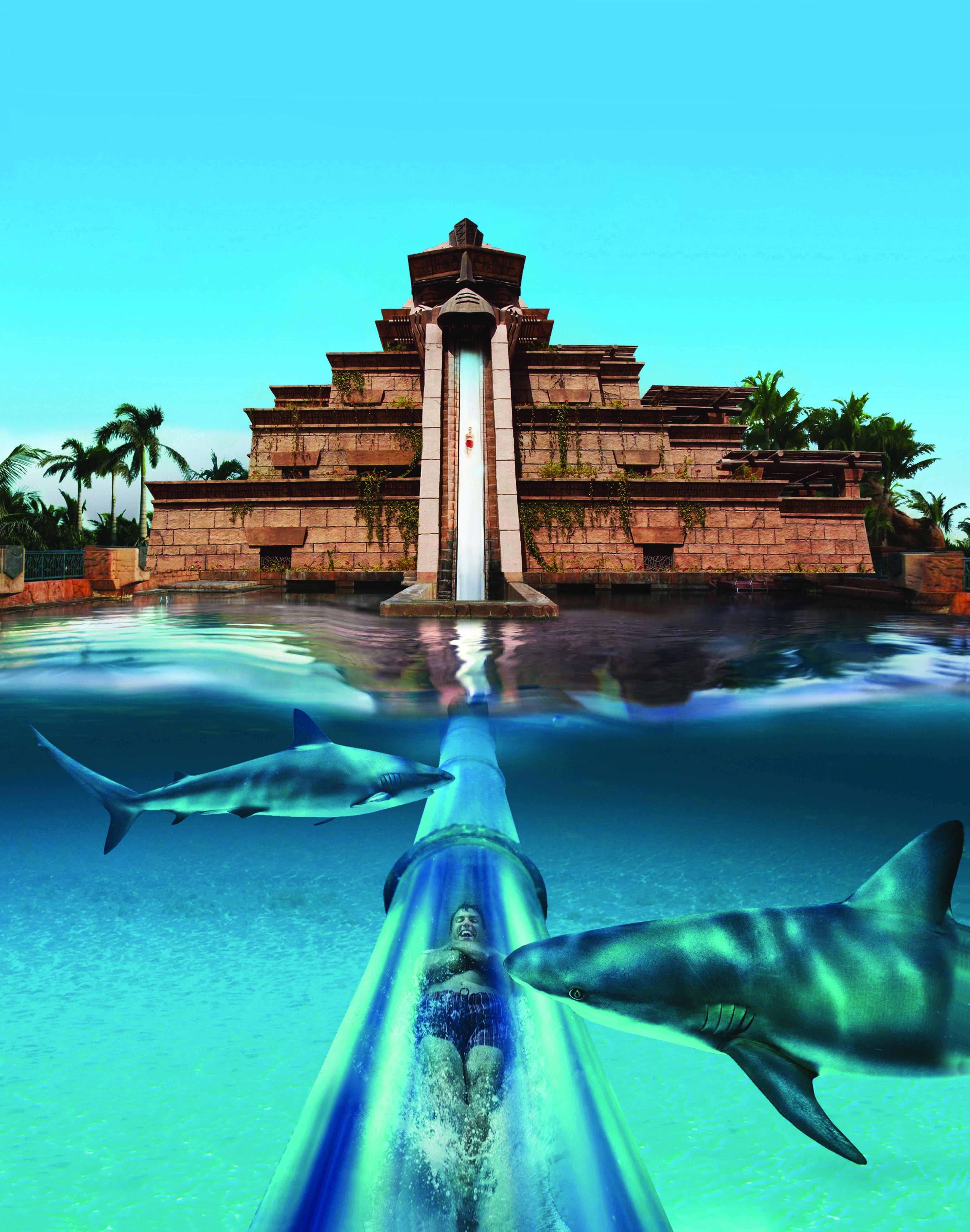 Atlantis Dubai Bed And Breakfast