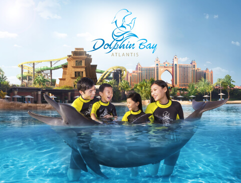 Atlantis The Palm Resort - Dolphin Experiences