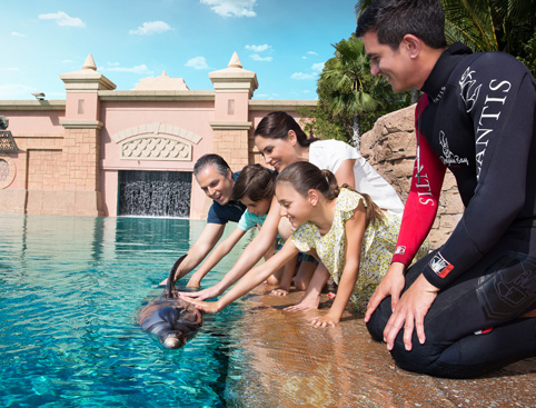 Swimming With Dolphins at Atlantis The Palm