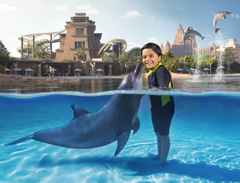 swimming with dolphins at atlantis the palm dubai attractiontix