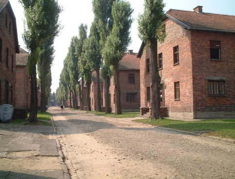 Auschwitz Tour from Krakow