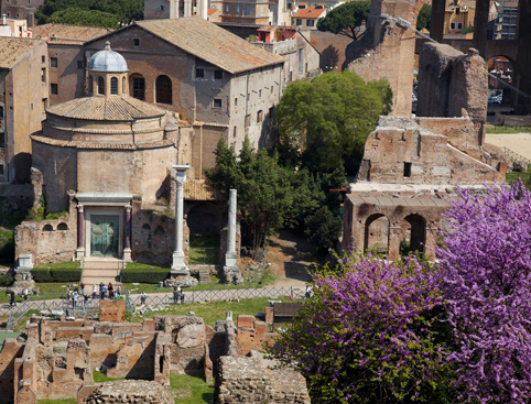 Palatine Hill Tour Rome Italy