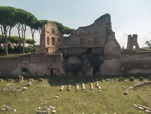 Tour of Palatine Hill and Roman Forum