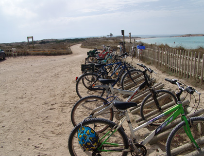 Formentera Cycling Tour from Ibiza