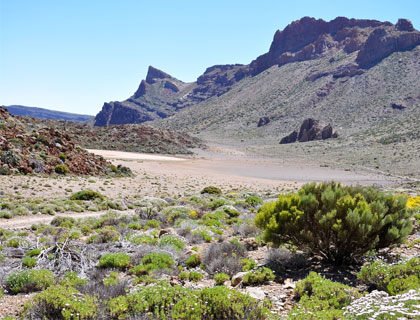 Half Day Mount Teide Tour- Las Canadas National Park