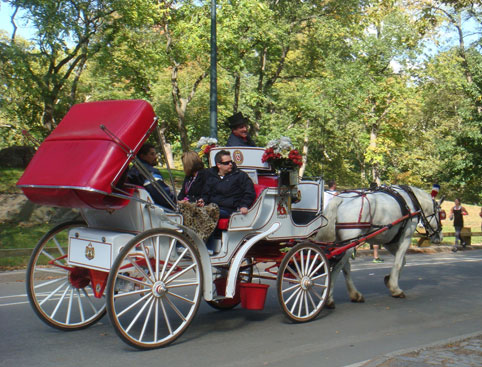 horse carriage ride central park attractiontix. Black Bedroom Furniture Sets. Home Design Ideas