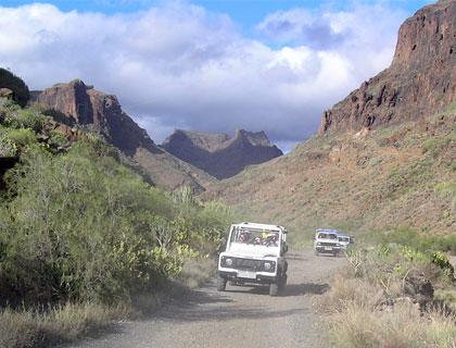 Jeep Safari Majorca- Jeep In Country Terrain