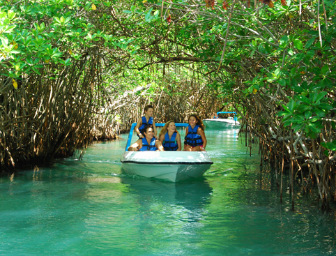 Jungle Speedboat Tour Mexico