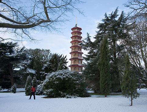 Kew Gardens & Palace Tickets