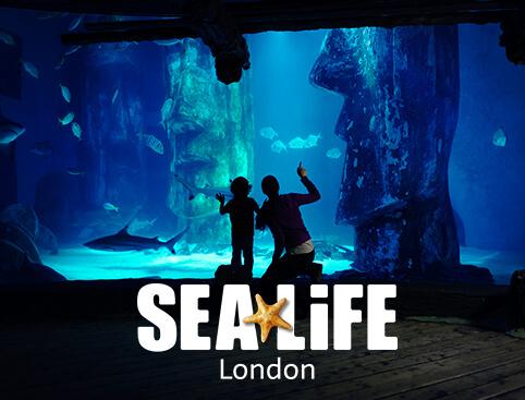 London-Big-3-Ticket