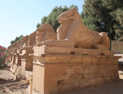 Luxor by Air from Sharm El Sheikh