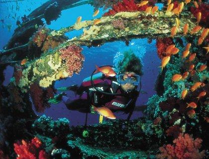 Ocean College PADI Advanced Open Water Dive 2 Days
