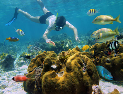 scuba diving tour cancun