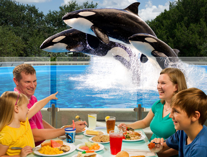 SeaWorld Dine with Shamu