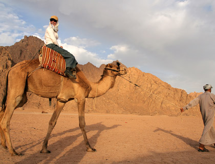 Sharm El Sheikh Camel Ride & Bedouin Dinner