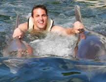 Swim With Dolphins Miami
