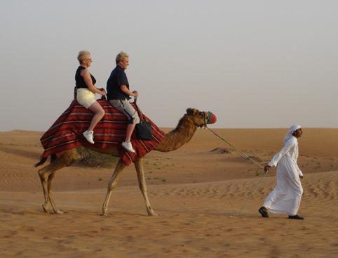 Ultimate Safari Adventure Dubai