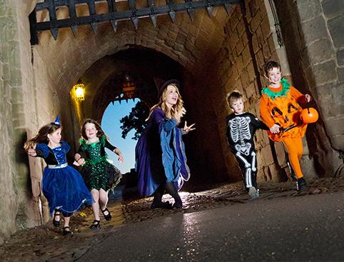 Warwick Castle- The King