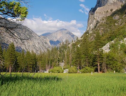 Yosemite-National-Park-Tour2.jpg