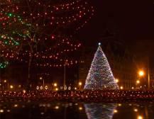 New York Holiday Lights Tour