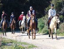 Horse Riding - from Bodrum