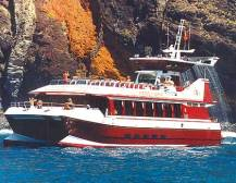 Royal Delfin Catamaran Cruise