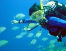 Scuba Diving - Antalya, Kemer