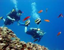 Scuba Diving - from Fethiye